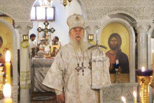 В дни Рождественских святок митрополит Ириней с архипастырским визитом
